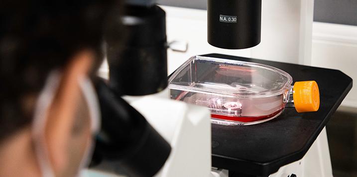 Un proyecto de CIDETEC utilizará huesos a partir de ARN modificado e impresión 3D para hacer frente a la osteoporosis